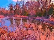 Art In Halifax Digital Art - Linear Abstraction of Pond by John Malone