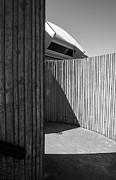 Arkady Kunysz - Lines and shadows
