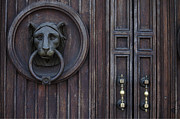Outsides Art - Lion Door by Ivete Basso