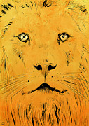 Pop Drawings Framed Prints - Lion Framed Print by Giuseppe Cristiano