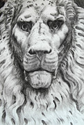Genoa Drawings Posters - Lion head sculpture Poster by Julia Mikhailiuk
