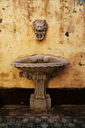 Nelieta Mishchenko - Lion Head water fountain