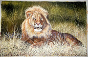 Hukam Chand Wildlife artist -