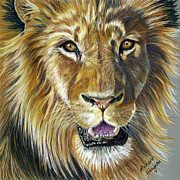 Wildlife Prints Drawings Framed Prints - Lion King Framed Print by Michelle Wrighton
