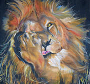 Cat Paw Originals - Lion Licking Paw by Harlene Bernstein