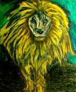 Featured Pastels - Lion by Lynette  Swart