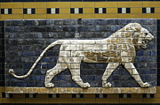 Ishtar Photos - Lion of Ishtar Gate by Erdal Oskay
