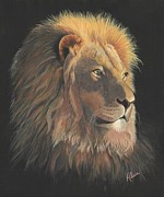 Lion Of Judah Paintings - Lion of Judah by Alicia  Fowler