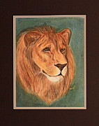 Lion Drawings Originals - Lion Of Judah by Stephen Helton