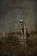 Delos Prints - Lion Statue Island of Delos Print by Carrie Kouri