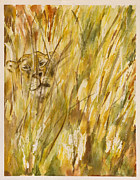 Rina Bhabra - Lion Through the Grass