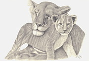 Lioness Drawings Posters - Lioness and Cub Poster by Patricia Hiltz