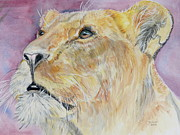 Lioness Print by Janina  Suuronen