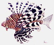 Lionfish Paintings - Lionfish by Robert Hunter