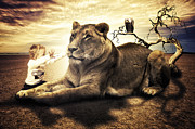Fantasy Animal Prints - Lionheart Print by Erik Brede