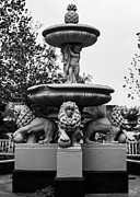 Lion's Fountain Print by Nathan Hillis