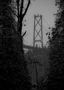Lions Gate Bridge Posters - Lions Gate Bridge Poster by Nancy Harrison