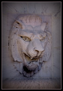 Lions Digital Art Framed Prints - Lions Head Framed Print by Ernie Echols
