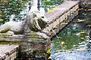 Pond In Park Painting Prints - Lions in the Renaissance Court fountain  Print by Lanjee Chee