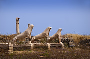 Delos Prints - Lions of Delos Print by Brenda Kean