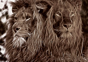 Lions Digital Art Framed Prints - Lions Framed Print by Tilly Williams