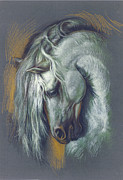 Neck Digital Art Posters - Lipizzan Horse Poster by Zorina Baldescu