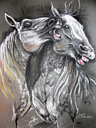 Horse Pastels Originals - Lippizan horses fight soft pastel  by Angel  Tarantella