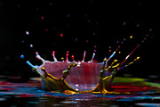 Paint Splash Photos - Liquid Coronet  by Guy Viner
