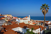 Hill Town Framed Prints - Lisbon Alfama Panoramic View Toward the River Framed Print by Kiril Stanchev