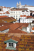 Rooftop Photos - Lisbon - Alfama rooftops and Sao Vicente de Fora Monastery by Jose Elias - Sofia Pereira