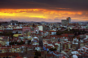 Down Town Prints - Lisbon at Sunset Print by Carlos Caetano