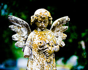 Religious Art Photo Metal Prints - Little Angel Metal Print by Sonja Quintero