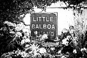 Plaque Photo Prints - Little Balboa Island Sign Black and White Picture Print by Paul Velgos