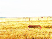 Little Bench On The Prairie Print by Lenore Senior