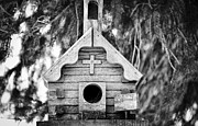 Animal Shelter Art - Little Birdie Church by Christi Kraft