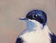 Painted Feathers Paintings - Little Blue and White by Nancy Merkle