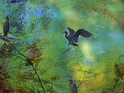 Layered Textures Prints - Little Blue Heron Print by J Larry Walker