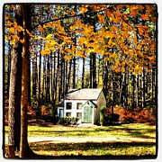 Fall Pyrography Metal Prints - Little Cabin in the Woods Metal Print by Amanda Enos