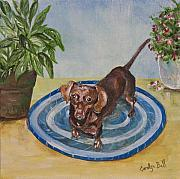 Carolyn Bell - Little Dachshund Puppy