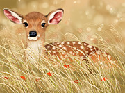 Summer Digital Art Metal Prints - Little fawn Metal Print by Veronica Minozzi