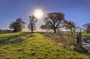 Scene Prints - Little Gaddesden Morning Print by David Dwight