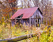 Barn In The Woods Photos - Little Lost Barn by Mike Flake