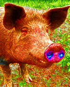 Pig Digital Art Metal Prints - Little Miss Piggy - 2013-0108 Metal Print by Wingsdomain Art and Photography