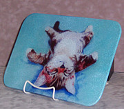 Animals Glass Art Originals - Little Napper cutting and serving board by Pat Saunders-White