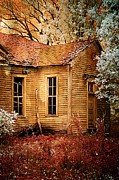 Brown Toned Art Metal Prints - Little Old School House II Metal Print by Julie Dant