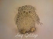Old Barn Drawing Prints - Little Owl Print by Amy  Goldup