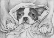 Terriers Drawings Prints - Little Paws in Strong Hands Print by Pamela Humbargar