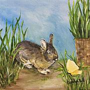 Carolyn Bell - Little Pet Bunny