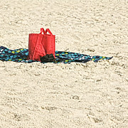 Beach Towel Prints - Little Red Bag On The Beach Print by Michael Flood