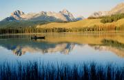 Background Photography Photos - Little Red Fish Lake, Stanley, Idaho by Emily Riddell